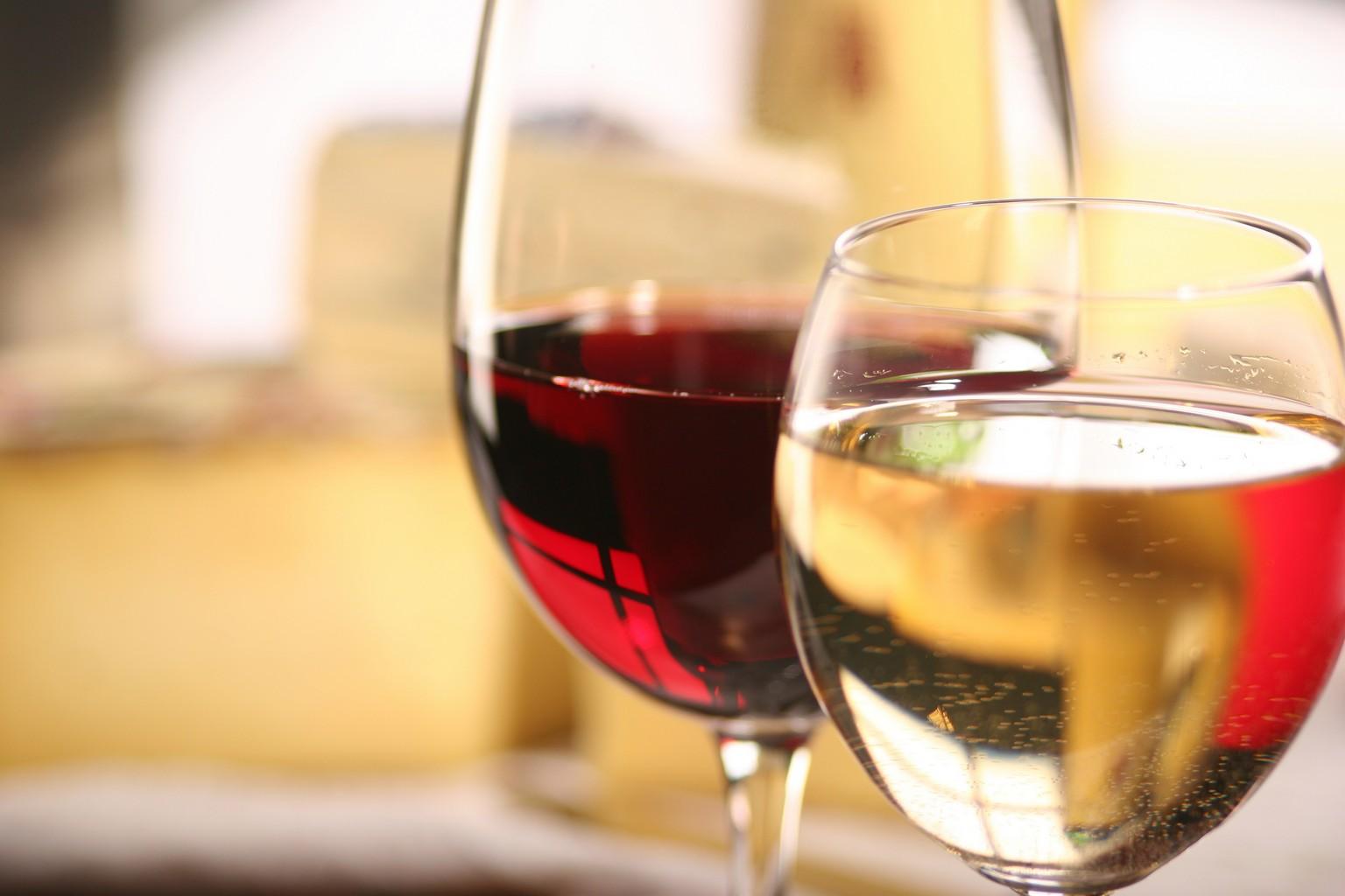 Vin Rhône, envie de les tester ?